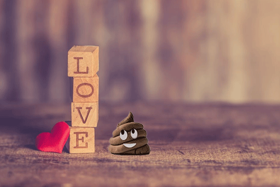 love for smooth poops
