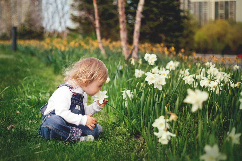 Smell the flowers little one